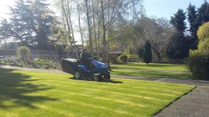 Garden maintenance Dublin