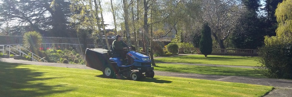 Commercial and residential Grounds maintenance experts