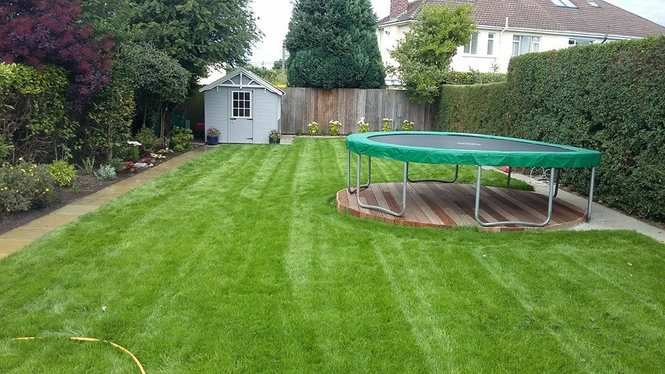 What to do if lawns get waterlogged?